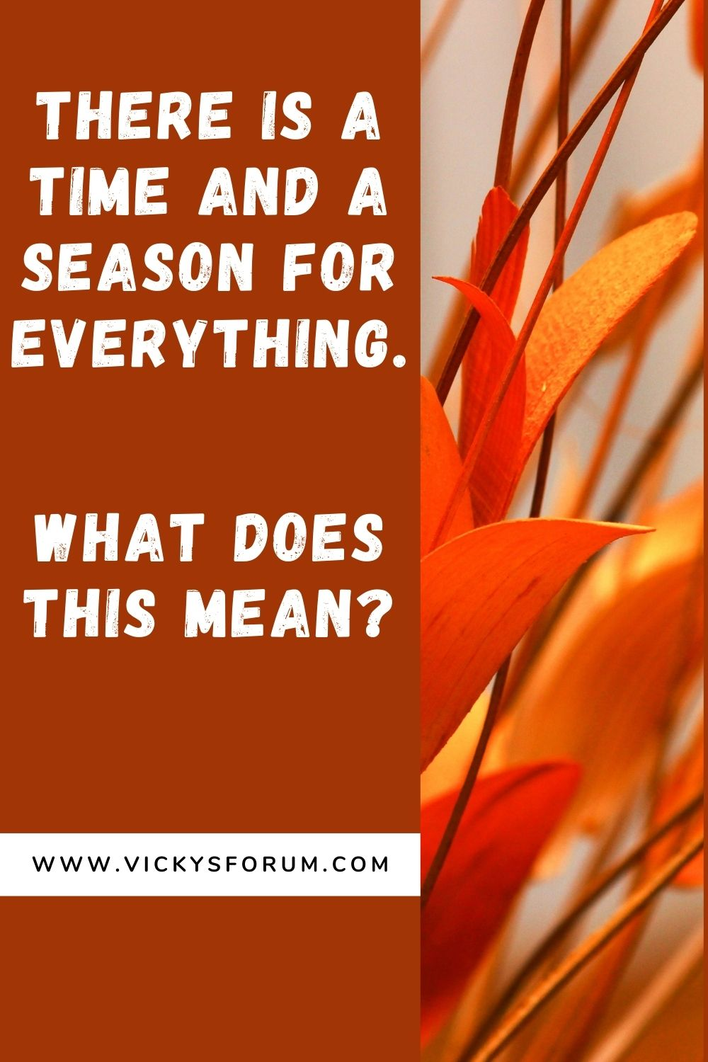 There is a time and a season for everything