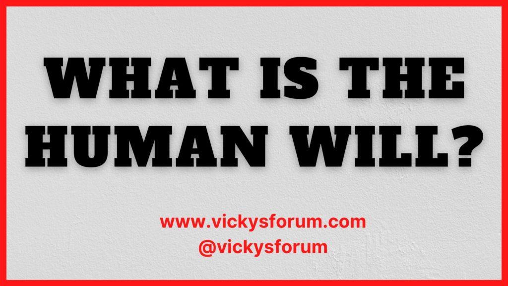 Vicky's Forum